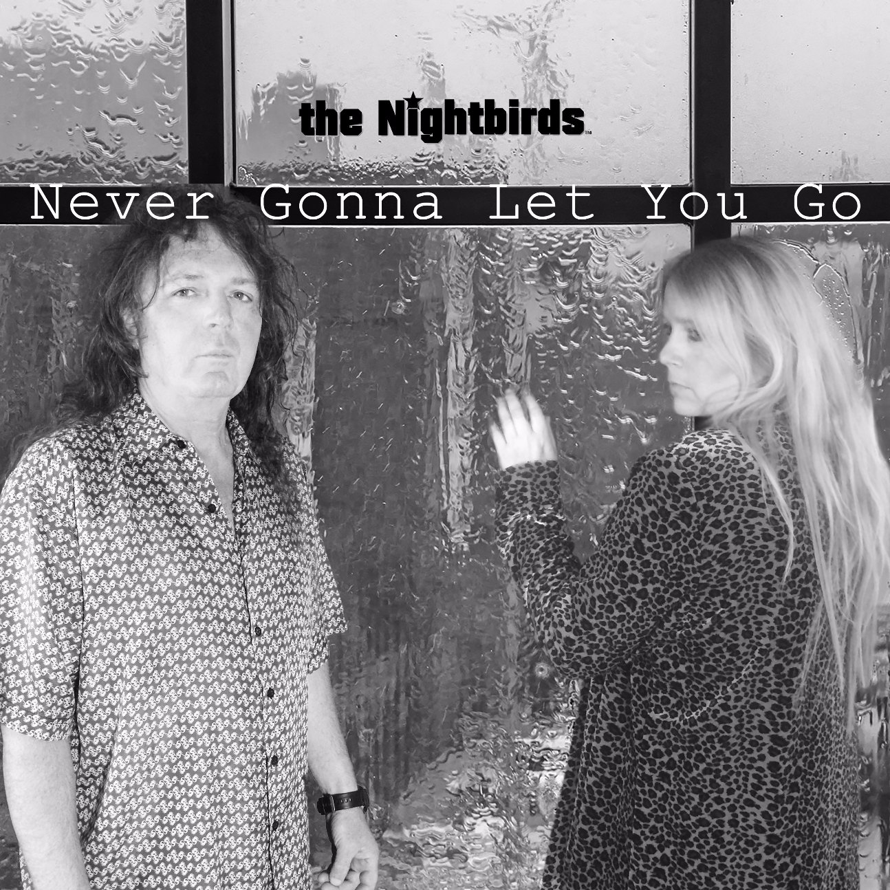 the nightbirds never gonna let you go