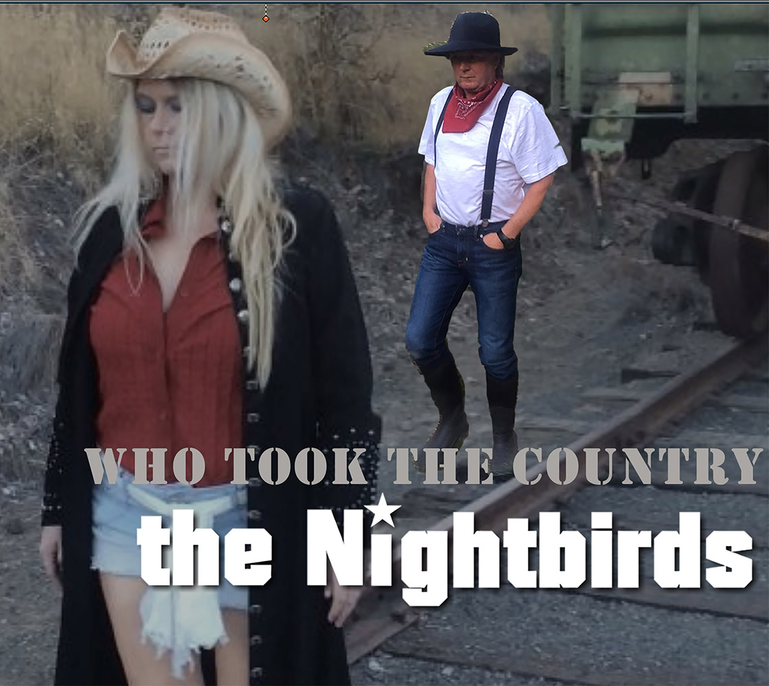 the nightbirds who took the country