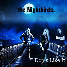 I don't like it by the Nightbirds