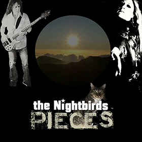 pieces by the nightbirds